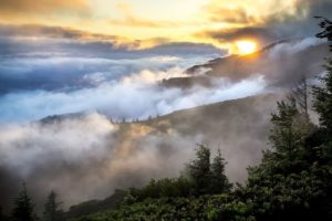 холмы пейзаж туман леса