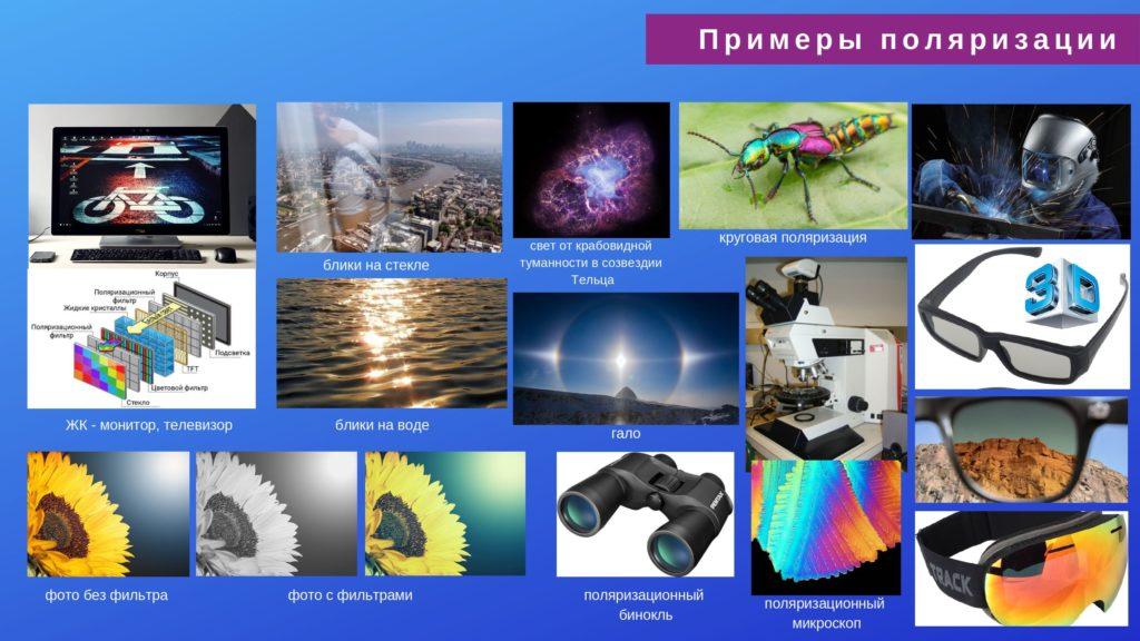 волновые свойства света. примеры поляризации