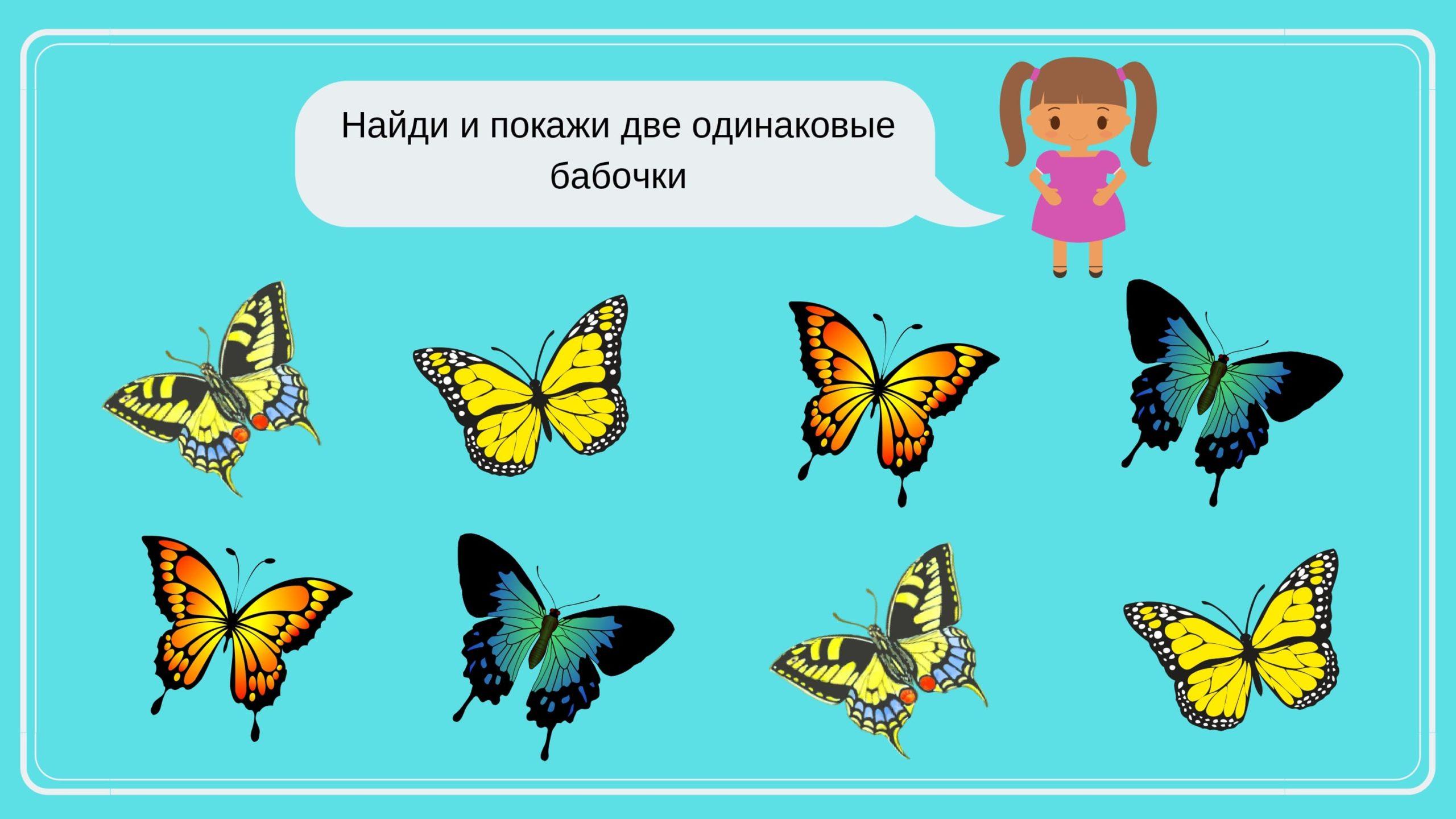 найди одинаковые бабочки