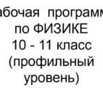 Рабочая  программа  по ФИЗИКЕ 10 — 11 класс (профильный уровень)