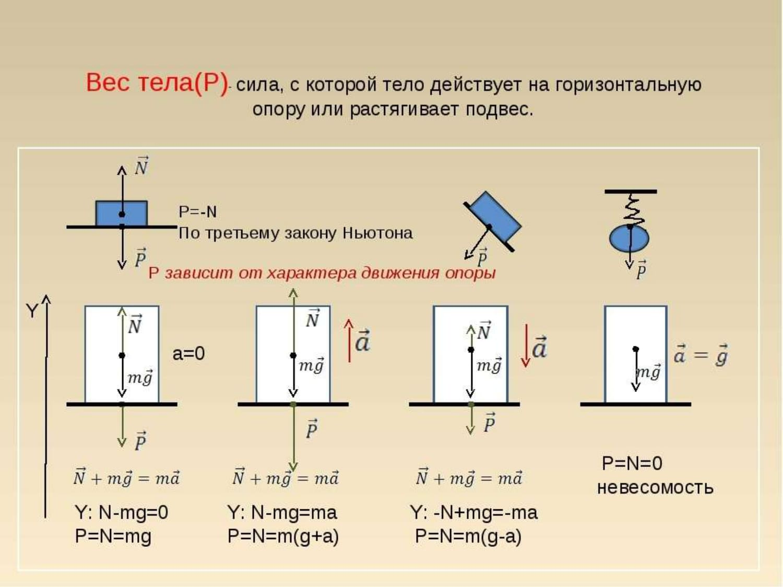 Вес тела (P) сила, с которой тело действует на горизонтальную опору или растягивает подвес