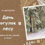 День прогулок в лесу. 18 декабря
