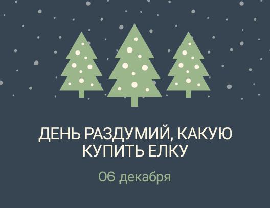 День раздумий, какую купить ёлку. 6 декабря