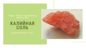 Калийная соль. Окружающий мир 4 класс