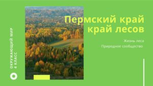 Пермский край. Лес. Окружающий мир 4 класс