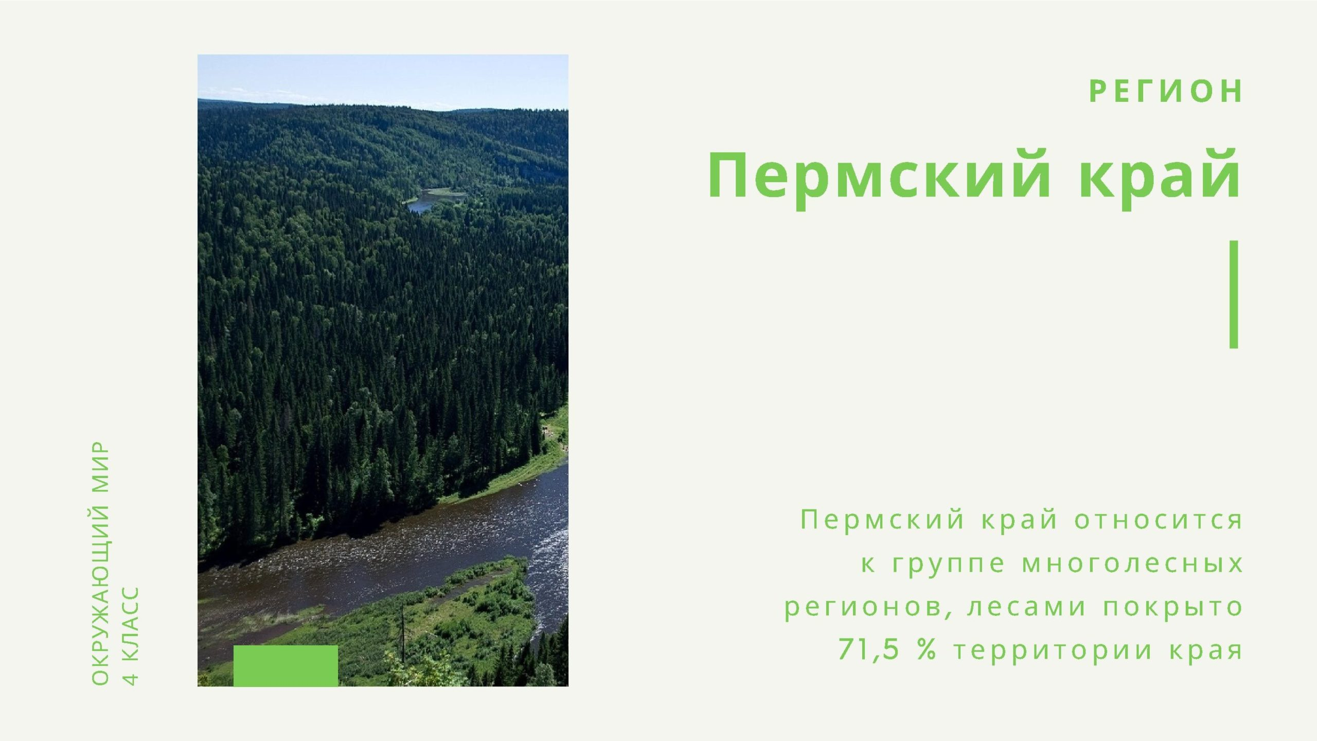 Пермский край относится к группе многолесных регионов