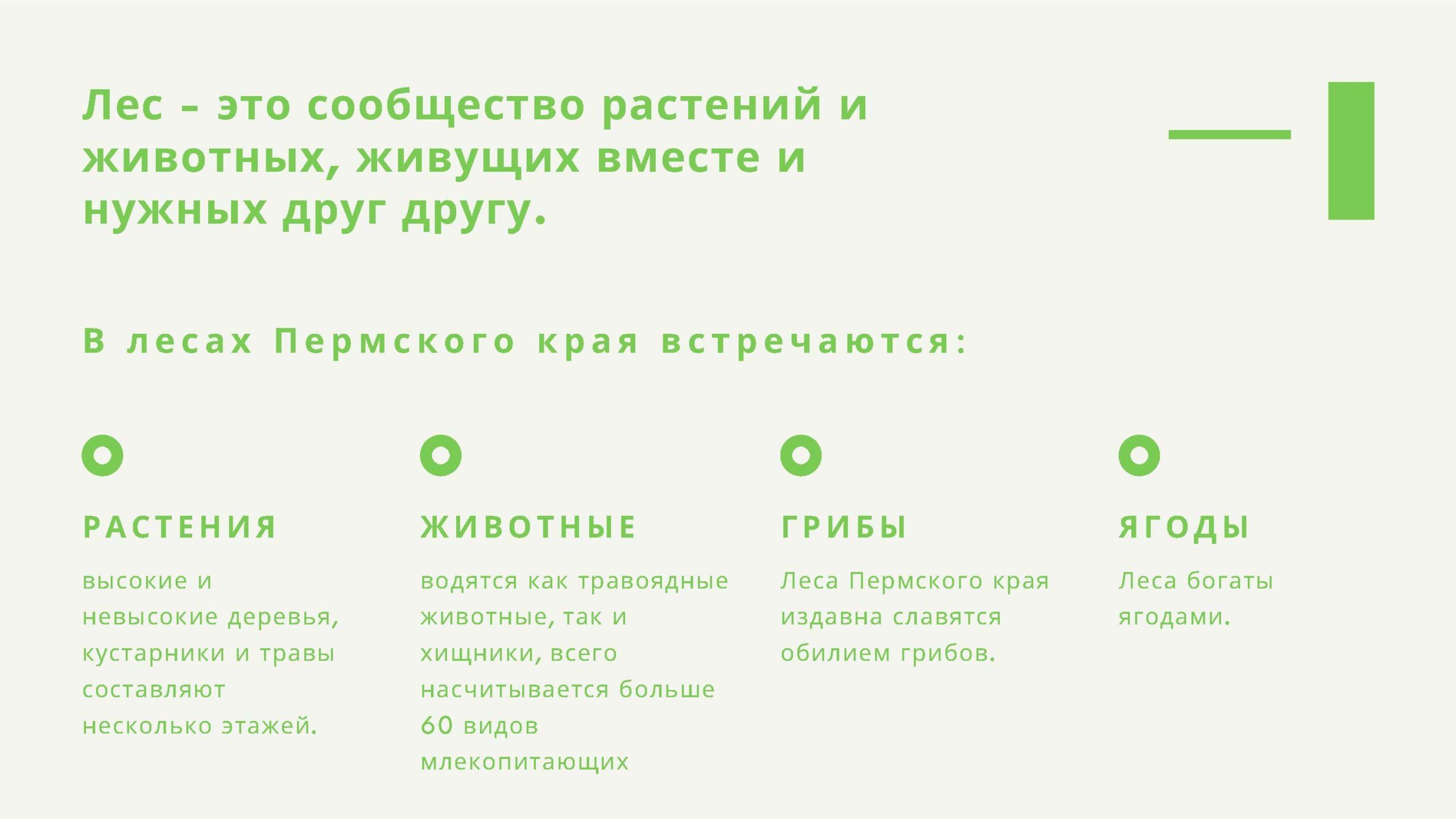 Лес - это сообщество растений