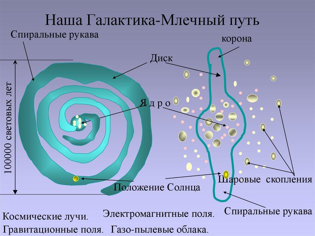 Наша Галактика-Млечный путь