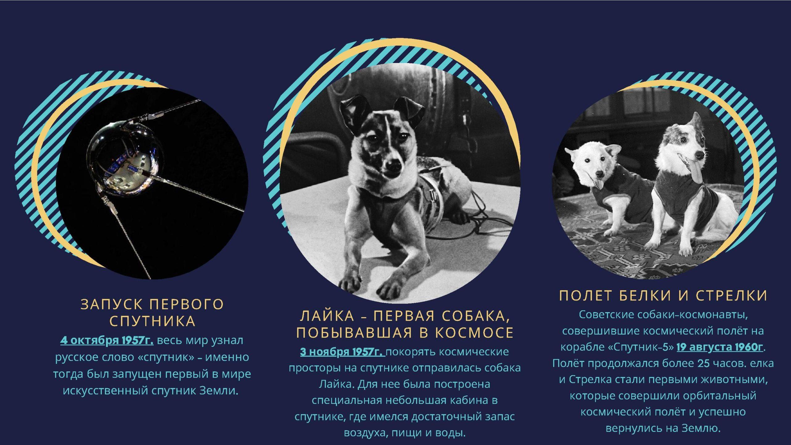Запуск первого спутника. Лайка - первая собака, побывавшая космосе