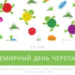 Всемирный день черепахи. 23 мая