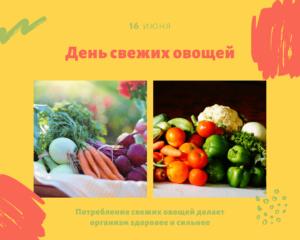 День свежих овощей. 16 июня